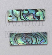 1pc Paua blanks 10x30x1mm