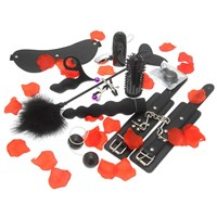 10 pieces bondage gear and sex toy kit