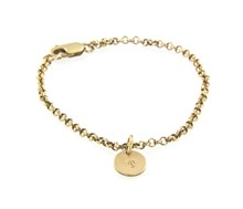 9ct yellow gold charm bracelet and charms