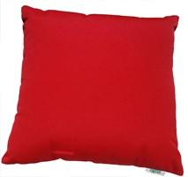 Logo Red Scatter Cushion