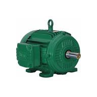 100kw AC induction EV motor