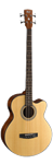 CORT SJB5F Acoustic Bass with Gig Bag