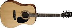 CORT AD 810 NS DREADNOUGHT