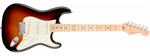 Fender American Professional Stratocaster Maple Neck