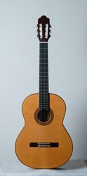 Esteve 2GR6F Spanish Flamenco  Guitar