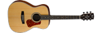 Cort L100C Concert Solid Spruce Top w Pickup