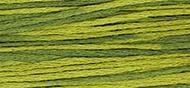 OverDyed Cotton - Weeks Dye Works 5 yard skein - Moss #2201