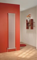 The Radiator Company TRC16 Double Vertical Designer Tube Radiator in Colour