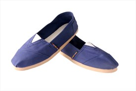 Applegator Shoes Navy