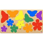 Butterfly  Sequence Puzzle