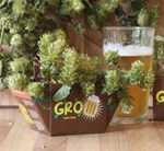 Grow Your Own Beer Gro' pot Set