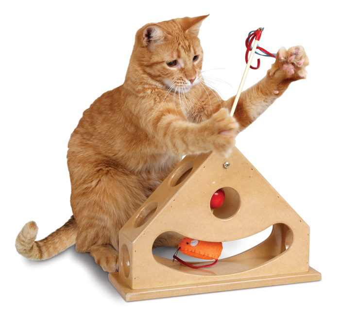 Interactive Toys For Cats 28