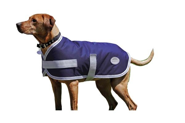 dog coat for medium large dogs size 55 cm bowhouse simply the best