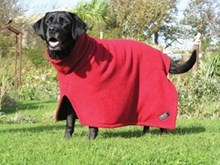 Drying Coat for Dogs -