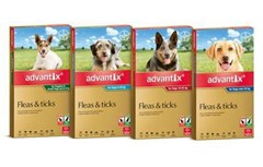 Advantix Flea & Tick Control for Dogs from $32.95