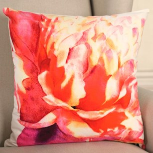 Ombré Rose Cushion