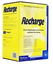 Recharge Horse 5L - (Vetsearch)