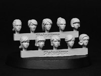 SMA102 Fine Scale Female Heads 2