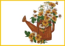 Country Daisies Picture/Placemat