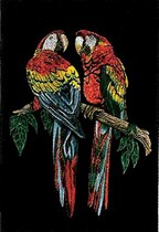 Scarlet Macaws Wallhanging on black velvet