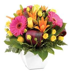Subiaco Florist is the Florist Shop that specialises in the Delivery of Flowers to Subiaco and surrounds