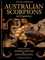 A Guide to Keeping AUSTRALIAN SCORPIONS in Captivity