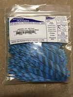 "Gateway Feathers 3"" R/W Shield Faux Barred Blue 100 Pack"