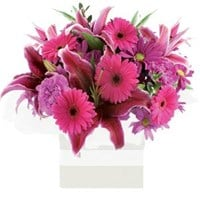 Pretty Pinks, Arrangements from $65