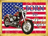 Harley - Born to Ride - Metal Wall Sign (2 sizes)