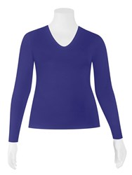FINAL SALE - Weyre - iris scvee long sleeve top
