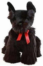 Hamish Scottish Terrier
