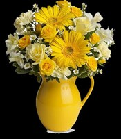 T57-1A Teleflora's Sunny Day Pitcher of Cheer