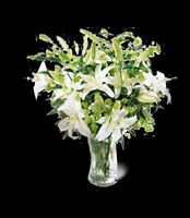 C7-3502S Lilies & More
