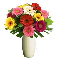 Beautiful Gerberas, From $55