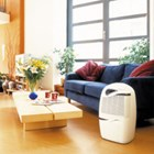Ebac 2850e 21 litre per day capacity portable domestic dehumidifier