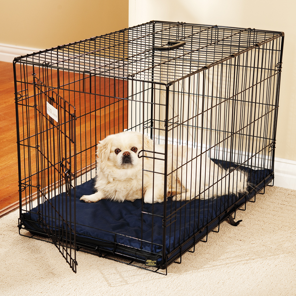 Dog Cage Liner Goldenacresdogs Com