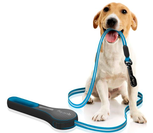 How To Choose The Right Leash For Your Dog