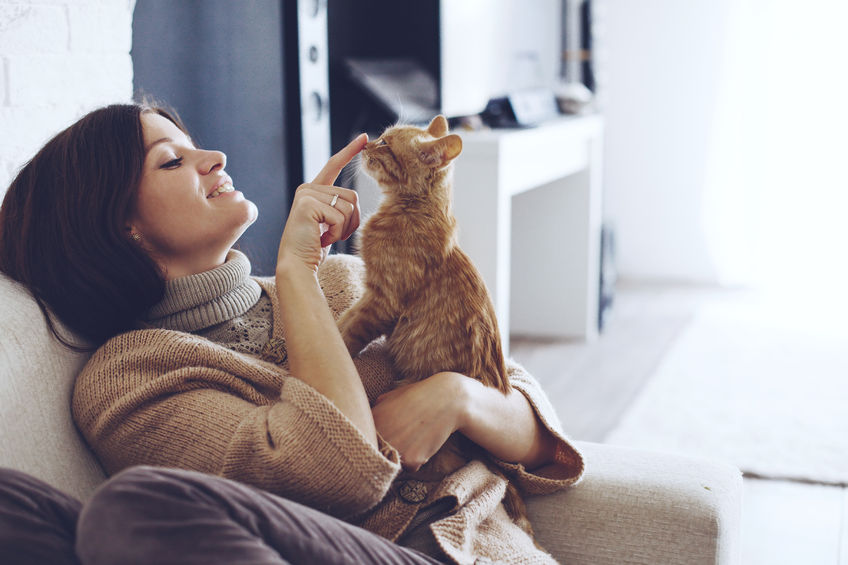 Making moving less stressful for your cat