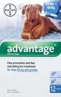 Advantage Blue Dogs Over 55lbs (25kg) - 12 Pack