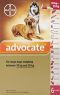 Advocate Dogs 22-55lbs (10-25kg) - 6 Pack