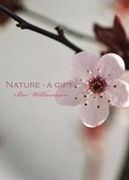 Nature: A Gift