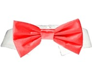 Red Satin Bow Tie Collar