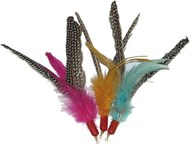 Da Bird Cat Toy (Refills)