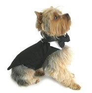 Wedding Tuxedo with Tails