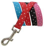 Polka Dot Leads - Red, Pink, Blue